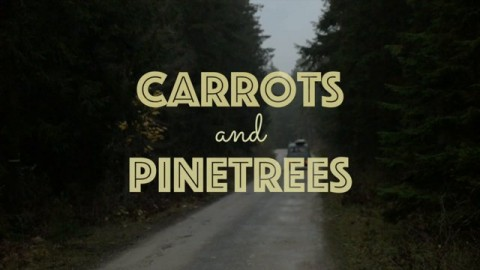 Carrots and Pinetrees