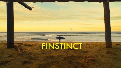 Finstinct