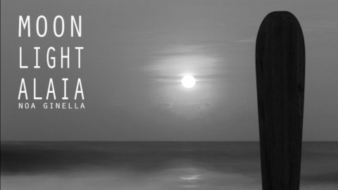 Moonlight Alaia