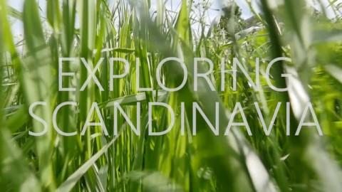 Exploring Scandinavia