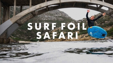 Surf Foil Safari